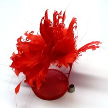 Bright Red Goose Nagoire and Stripped Coque Feather Mount